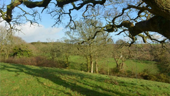 CORNWALL 17 ACRE SMALL HOLDING AND HOME – FREEHOLD £660,000  REF VSM365C